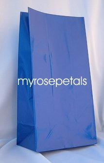 Paper Favor Treat Goody Luau Party Gift Bags - Royal Blue (12 Bags)