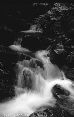 Serenity Falls BW Giclee Art Print 12x16