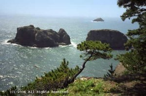 Peaceful Morning Oregon Coast Giclee Art Print 12x16