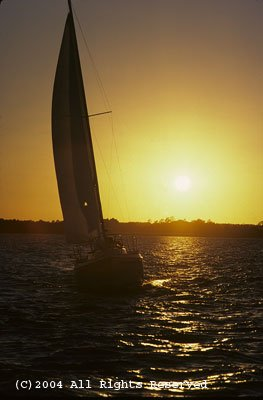 Sunset Sailing Giclee Art Print 12x16