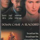 Down Came a Blackbird (VHS)