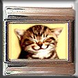 KITTY KITTEN SMILE ITALIAN PHOTO CHARM