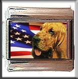BLOODHOUND AND AM FLAG ITALIAN CHARM