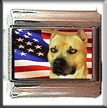 AMERICAN STAFFORDSHIRE TERRIER AND AM FLAG ITALIAN CHARM