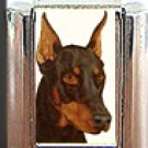 RED DOBERMAN PINSCHER ITALIAN CHARM