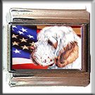 CLUMBER SPANIEL AND AM FLAG ITALIAN CHARM