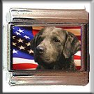 CHESAPEAKE BAY RETRIEVER AM FLAG ITALIAN CHARM