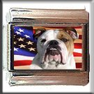 BULL DOG AND AM FLAG ITALIAN CHARM