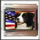 BORDER COLLIE AND AM FLAG ITALIAN CHARM