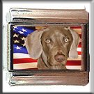 WEIMARANER AND AM FLAG ITALIAN CHARM