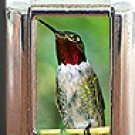 RUBY THROAT HUMMINGBIRD ITALIAN CHARM
