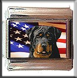 ROTTWEILER AND AM FLAG ITALIAN CHARM