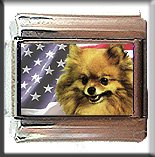 POMERANIAN AND AM FLAG ITALIAN CHARM