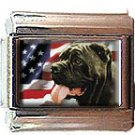 NEAPOLITAN MASTIFF AND AM FLAG ITALIAN CHARM