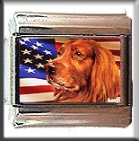 IRISH SETTER AND AM FLAG ITALIAN CHARM