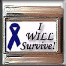 CANCER I WILL SURVIVE ITALIAN PHOTO CHARM