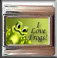 I LOVE FROGS ITALIAN CHARM CHARMS