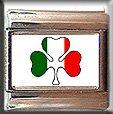 IRISH SHAMROCK ITALIAN CHARM CHARMS