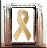 SKIN CANCER AWARENESS ITALIAN CHARM CHARMS