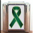 LIVER CANCER #2 AWARENESS ITALIAN CHARM CHARMS