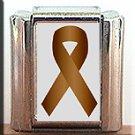 COLON CANCER AWARENESS ITALIAN CHARM CHARMS