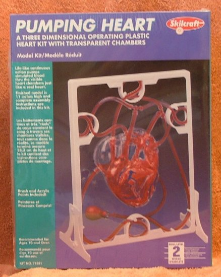 Pumping Heart Anatomy Kit