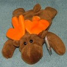 TY Beanie Baby Chocolate the Moose 1993 Retired Free Shipping