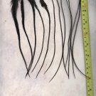 Salon Grade Feather Hair Extensions Genetic Grizzly Dyed Black PkA