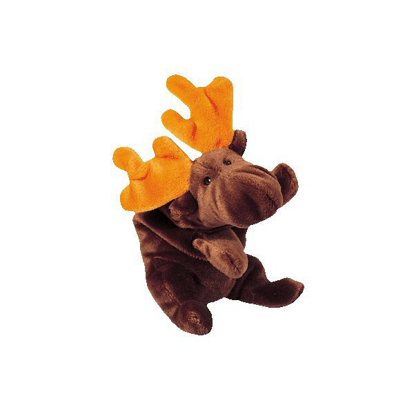 Chocolate the moose,  Beanie Baby - Retired