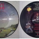 Nasty Savage Indulgence Picture Disc RARE