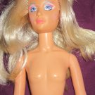 JEM and the Holograms doll Vintage 80's (Glam Rock,Rocker Female Band Doll)