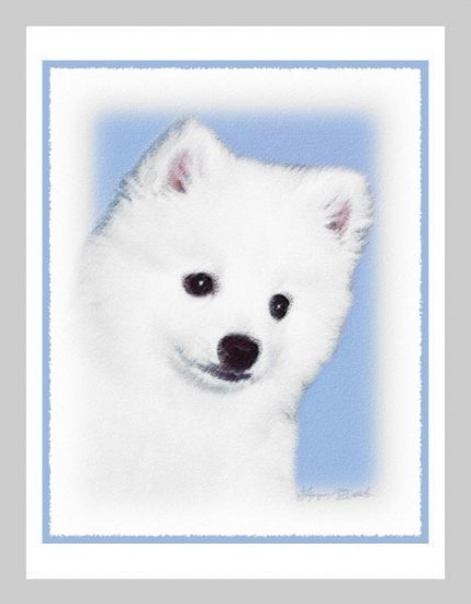 6 American Eskimo Puppy Note or Greeting Cards