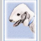 6 Bedlington Terrier Note or Greeting Cards