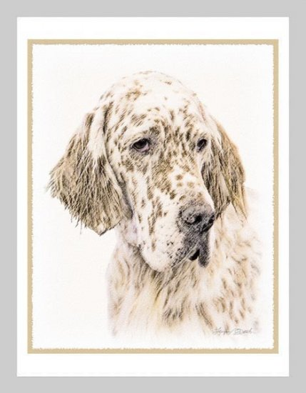 6 English Setter Note or Greeting Cards