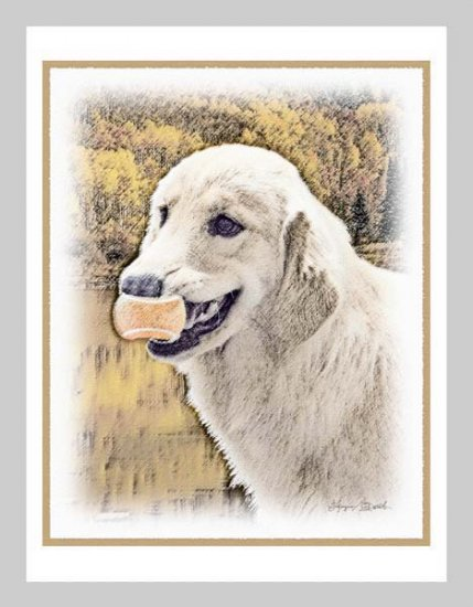 6 Golden Retriever Note or Greeting Cards