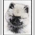 "6 Keeshond Note or Greeting Cards """"Puppy"""""