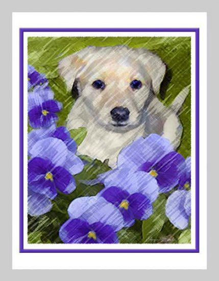 6 Labrador Retriever Puppy Note or Greeting Cards