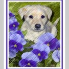 6 Labrador Retriever Puppy Note or Greeting Cards