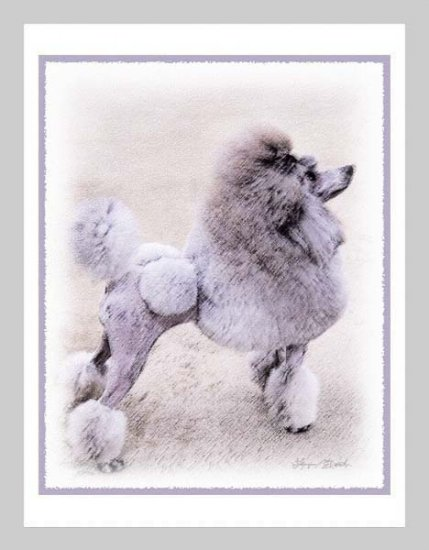 6 Poodle Note or Greeting Cards
