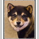 6 Shiba Inu Note or Greeting Cards