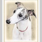 6 Whippet Note or Greeting Cards