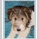 6 Wire Hair Fox Terrier Puppy Note or Greeting Cards