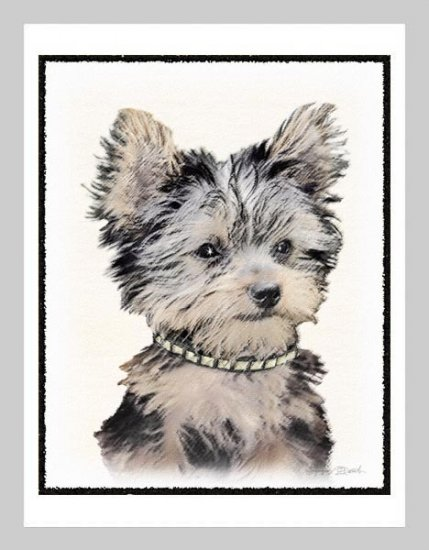 6 Yorkie Yorkshire Terrier Puppy Note or Greeting Cards