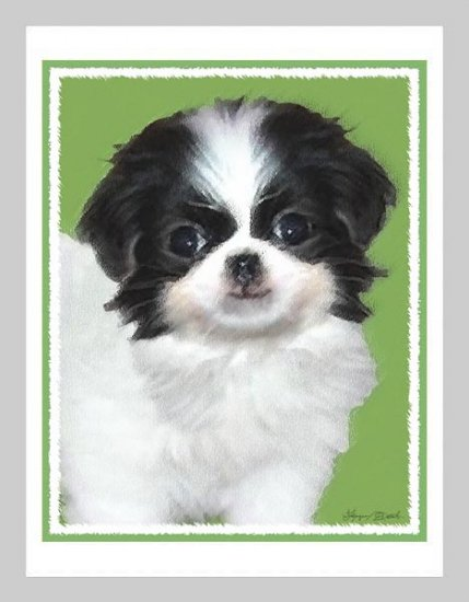 6 Japanese Chin Puppy Note or Greeting Cards