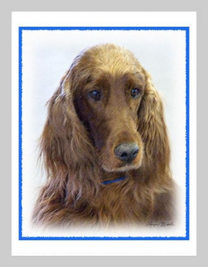 6 Irish Setter Note or Greeting Cards
