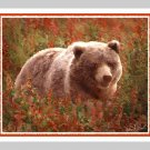 6 Grizzly Bear in FIreweed Note or Greeting Cards