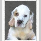 6 Clumber Spaniel Puppy Note or Greeting Cards