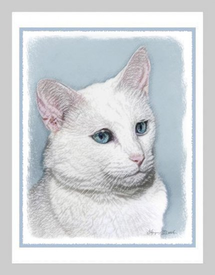 6 White Cat Note or Greeting Cards