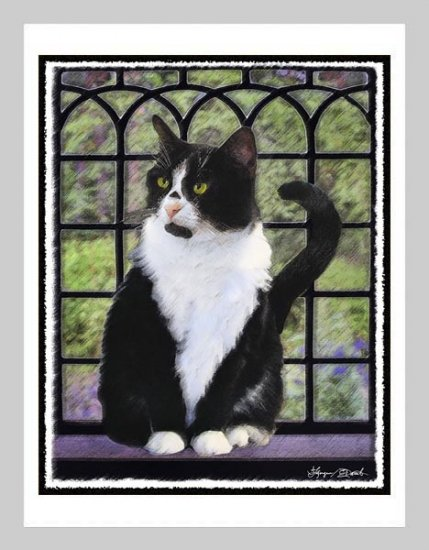 6 Tuxedo Cat in Window Note or Greeting Cards