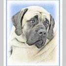 6 Bullmastiff Note or Greeting Cards